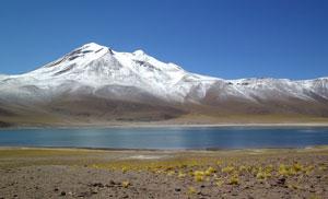 Laguna altiplanica (Andes, février 2011)